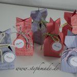 Goodies-Tütchen mit dem Envelope Punchboard (EPB)
