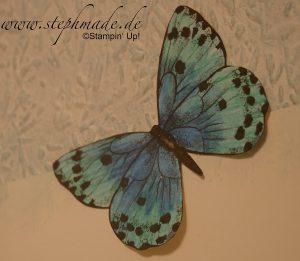 Dekoidee mit dem DP Schmetterlingsvielfalt